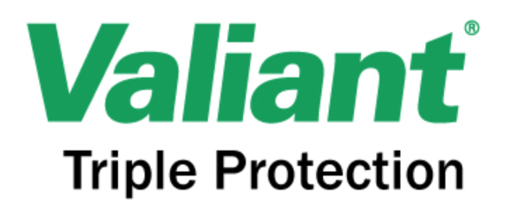 Valiant Chemicals Logo